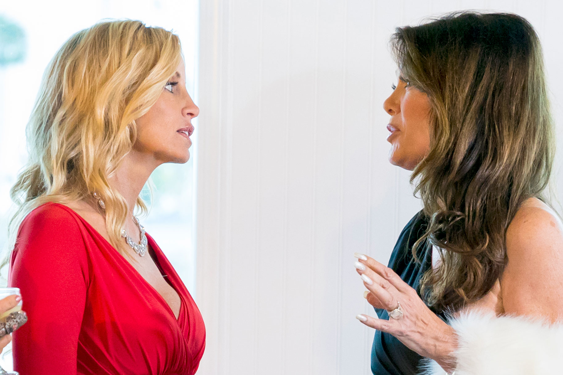 Lisa Vanderpump and Camille Grammer on The Real Housewives of Beverly Hills