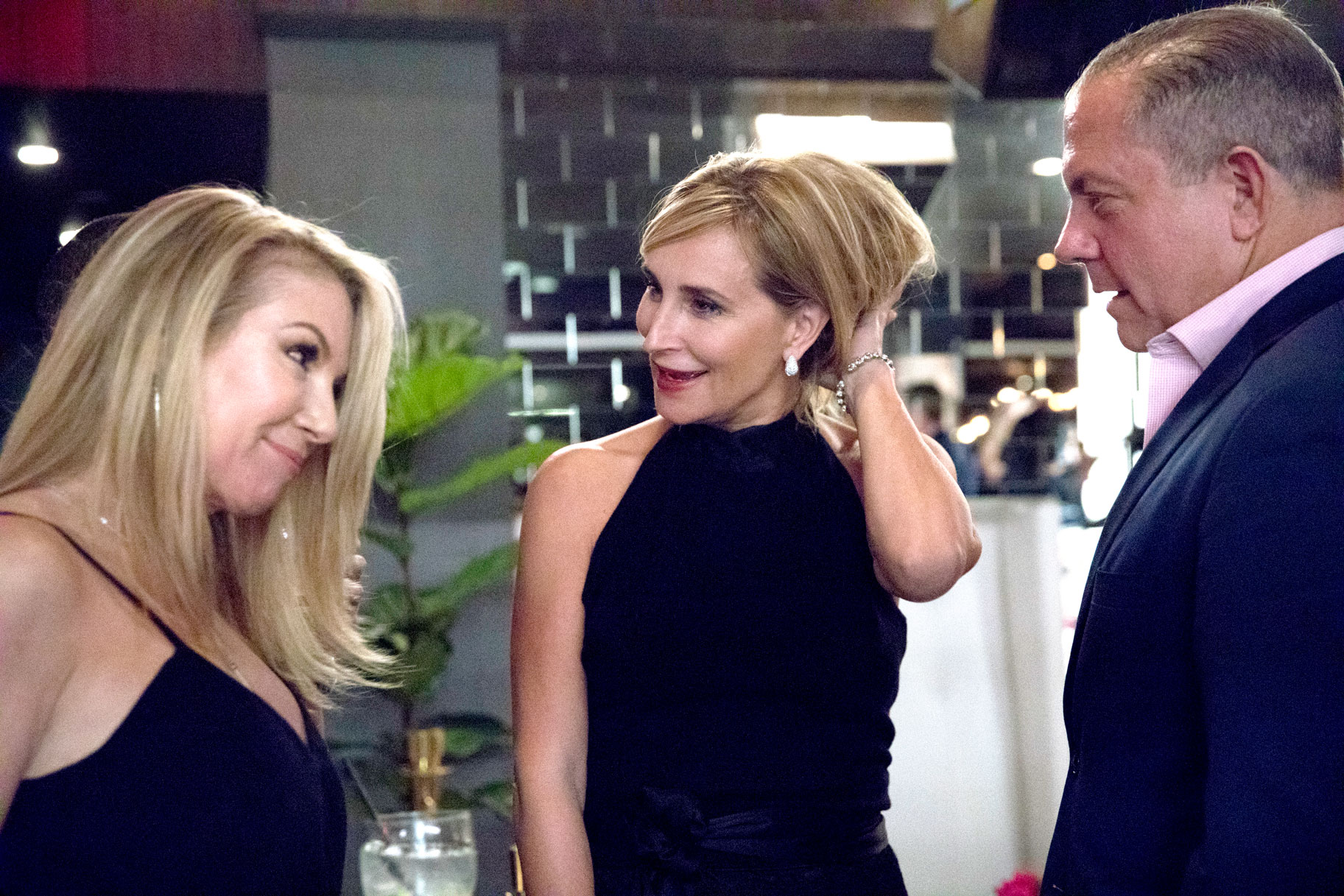 Ramona Singer, Sonja Morgan, Harry Dubin