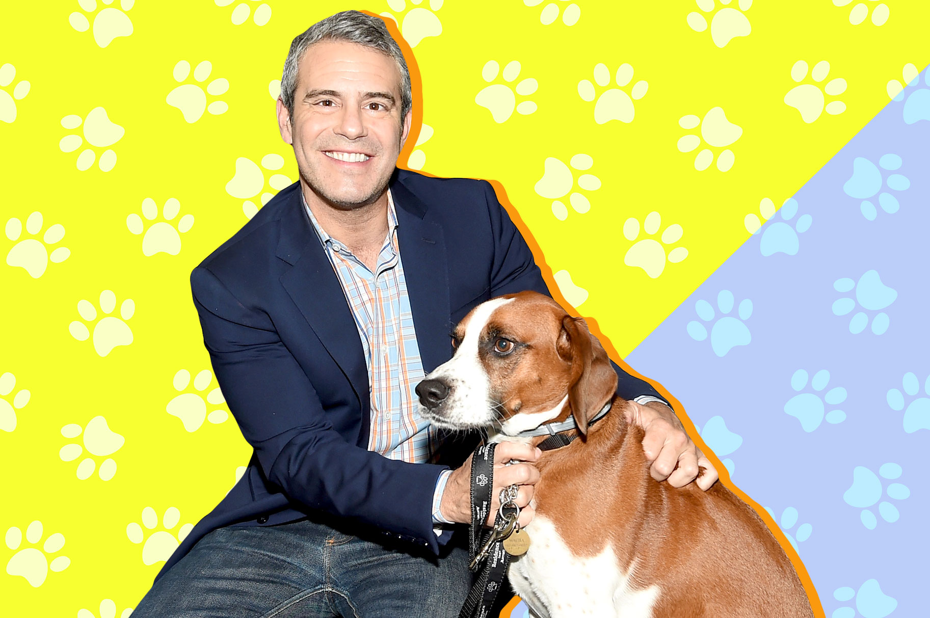 Andy Cohen with His Dog Wacha