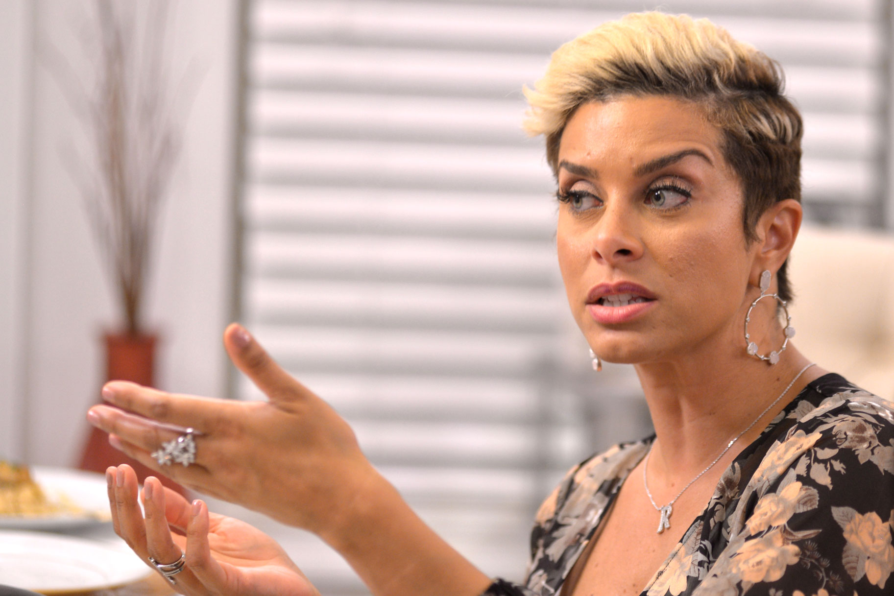 Robyn Dixon in The Real Housewives of Potomac Season 4