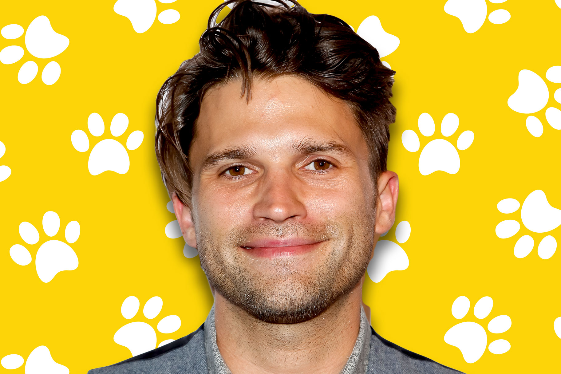 tom-schwartz-dog.jpg