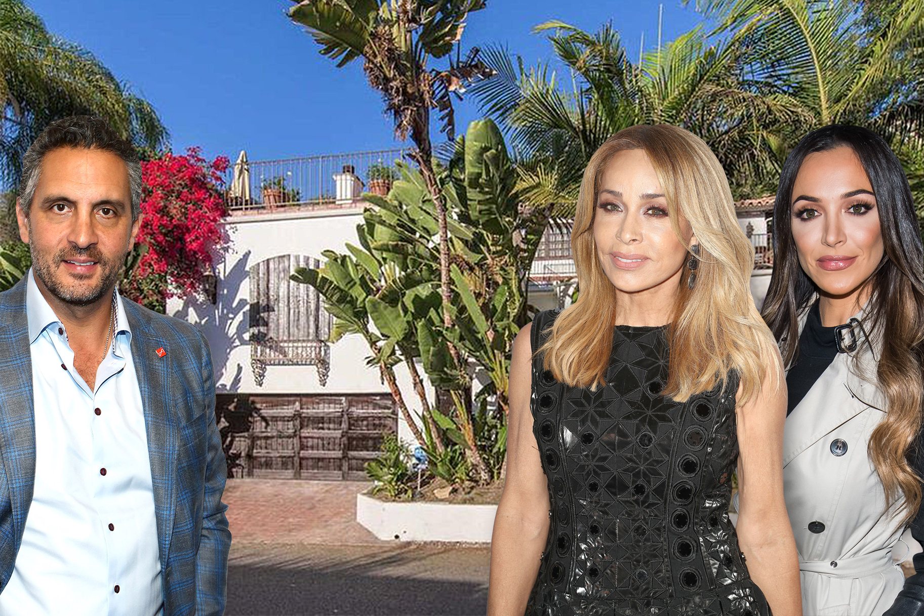 Faye Resnick Home Listing