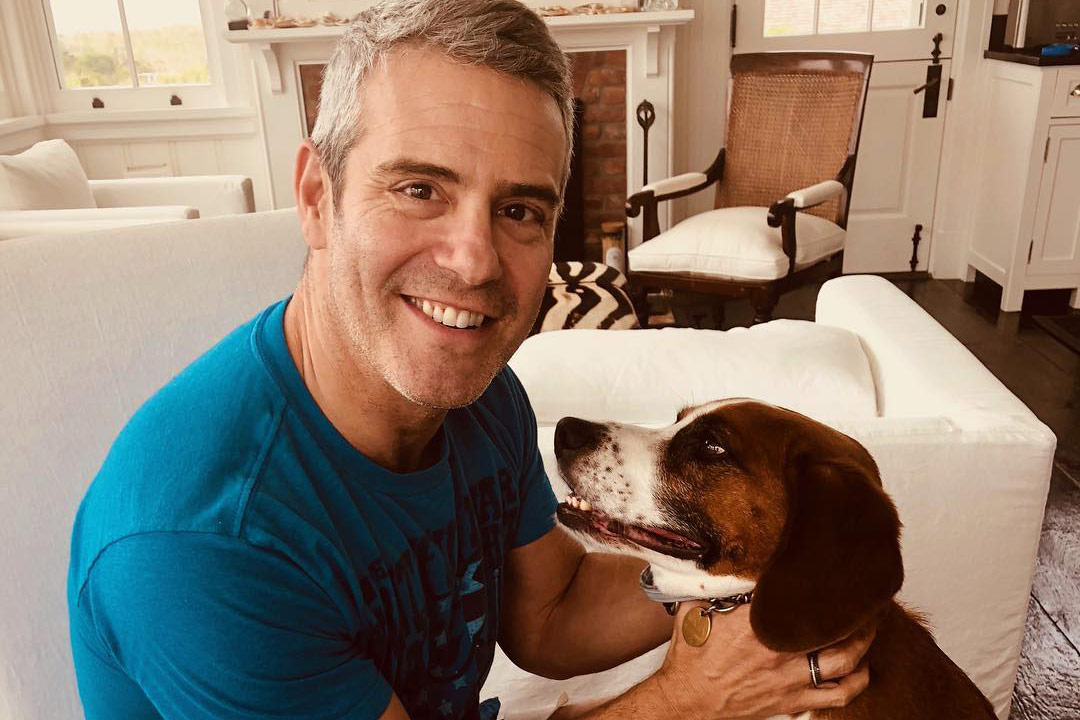 Andy Cohen Coronavirus Positive Recuparating