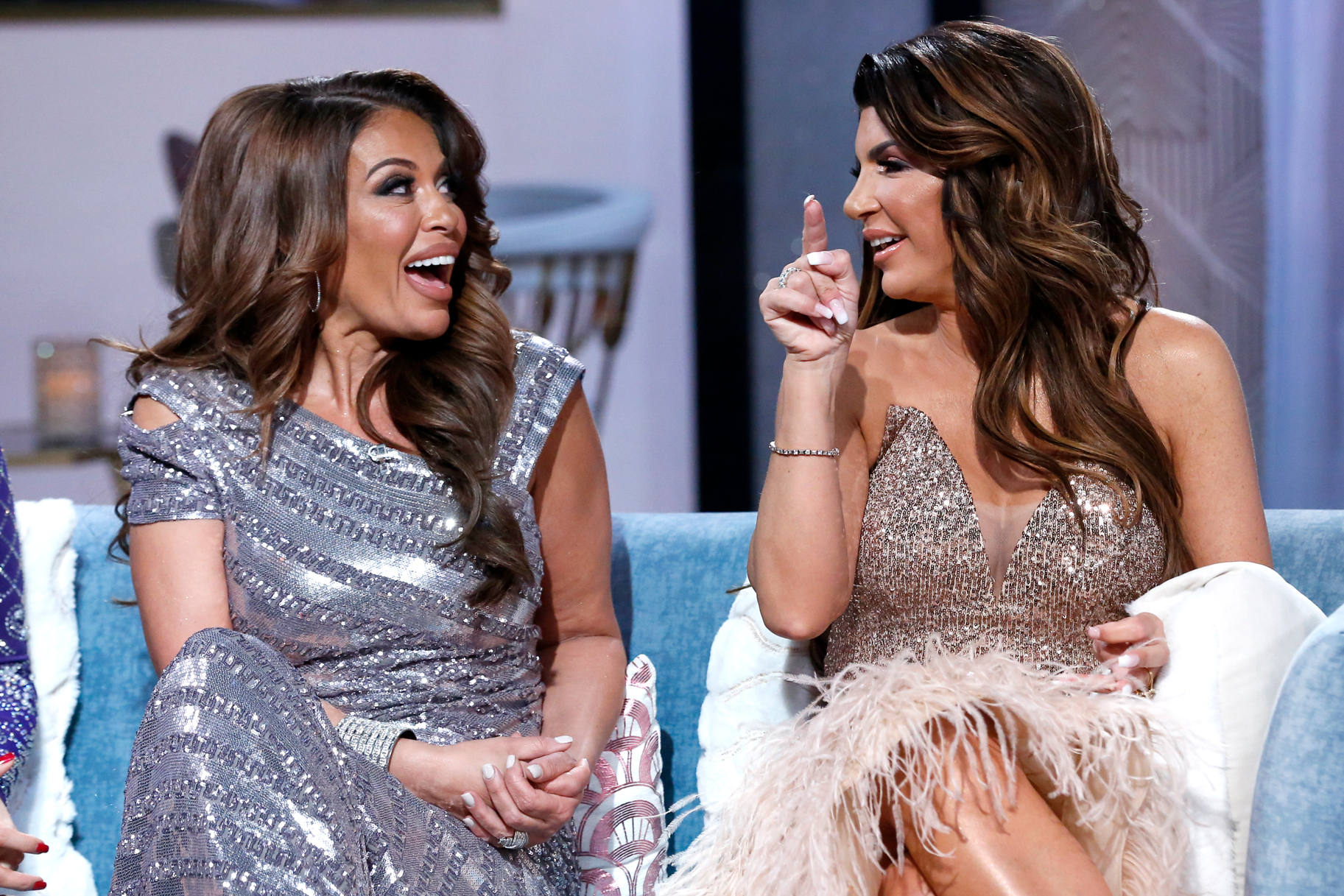 What You Didnt See Rhonj Reunion