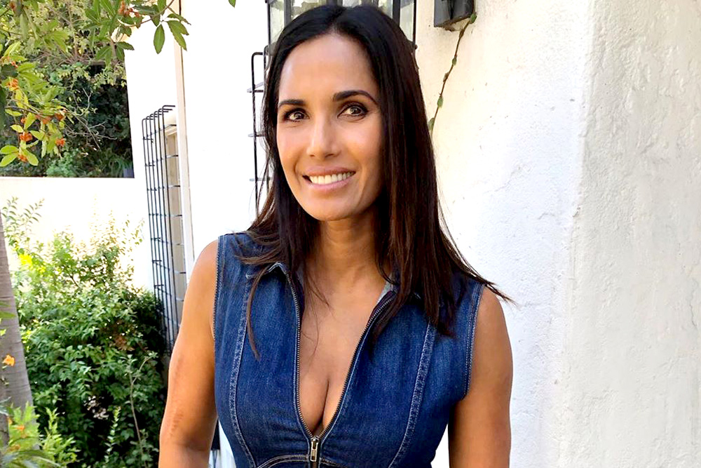 Padma Lakshmi Co Parenting Partner