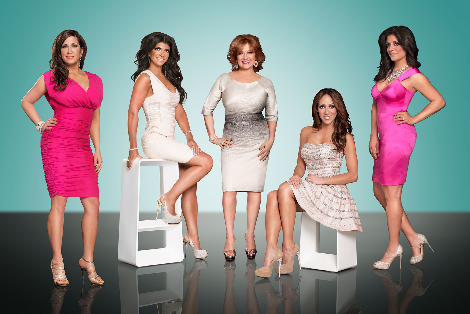 Rhonj Real Housewives Nj Season 5