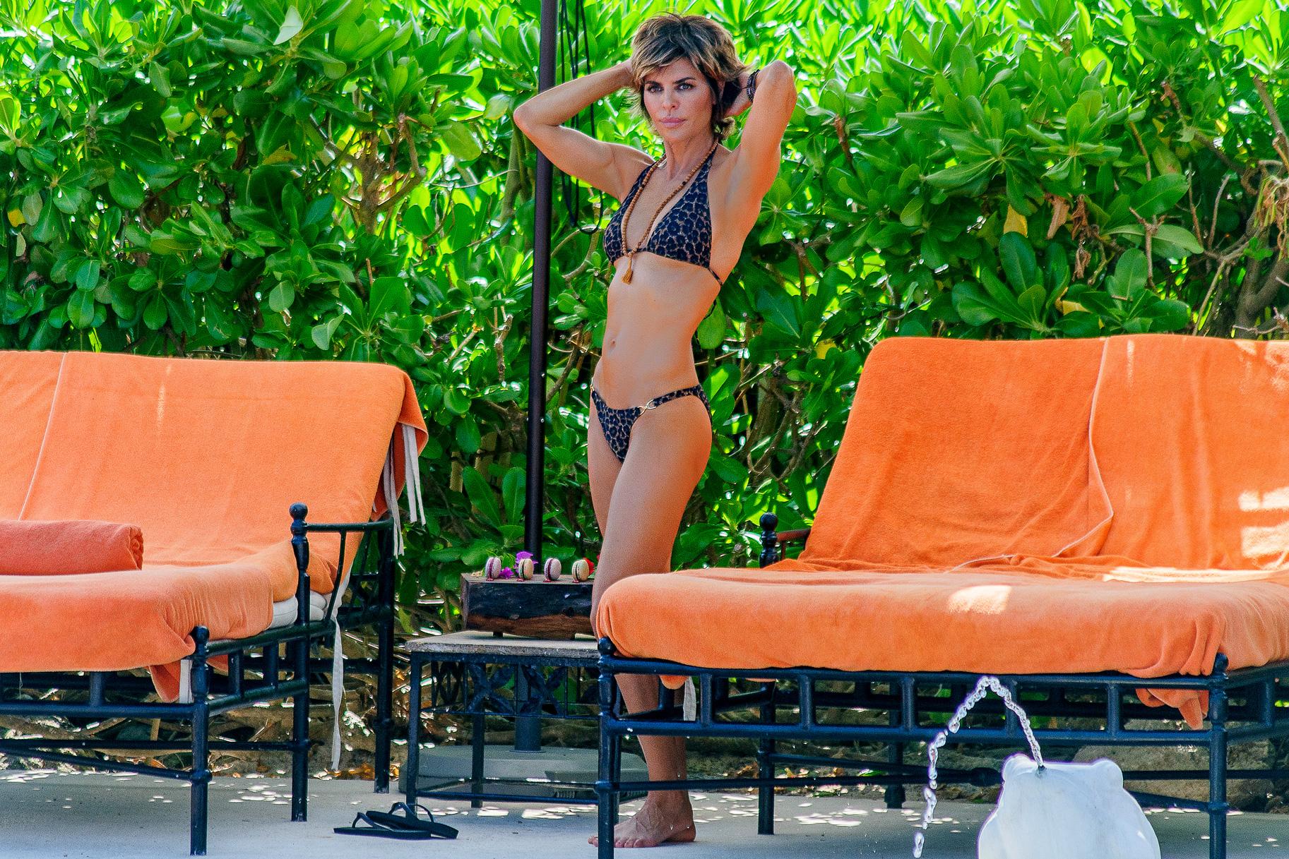Quickly Lisa rinna bikini