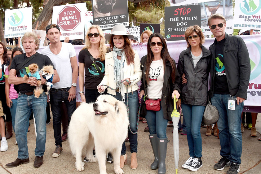 Lisa Vanderpump Celebrates Yulin Dog Meat Trade Ban   The