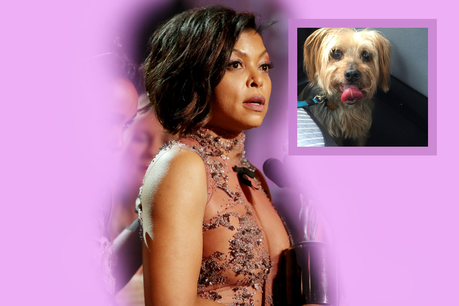 Taraji P Hensons 16 Year Old Dog Uncle Willie Died Unleashed