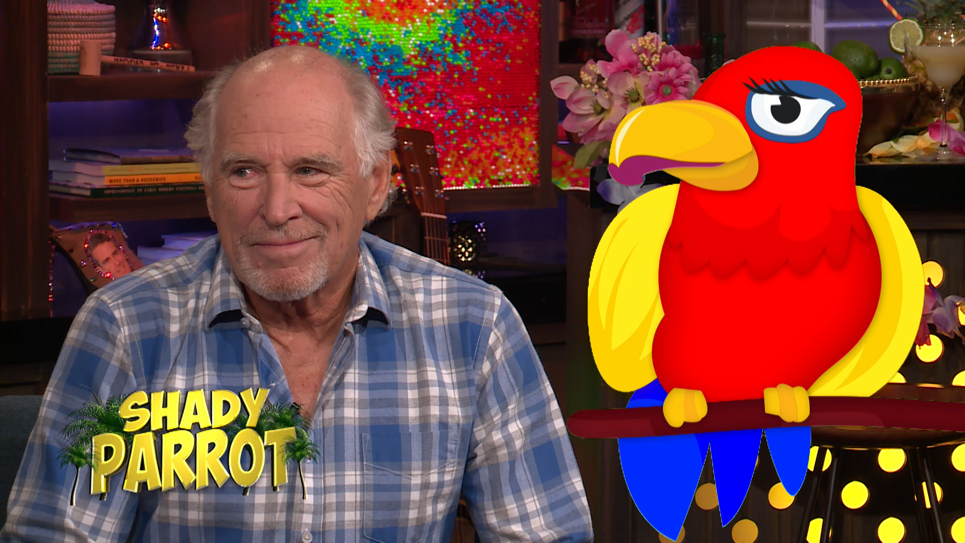 Jimmy Buffett Takes On the Shady Parrot