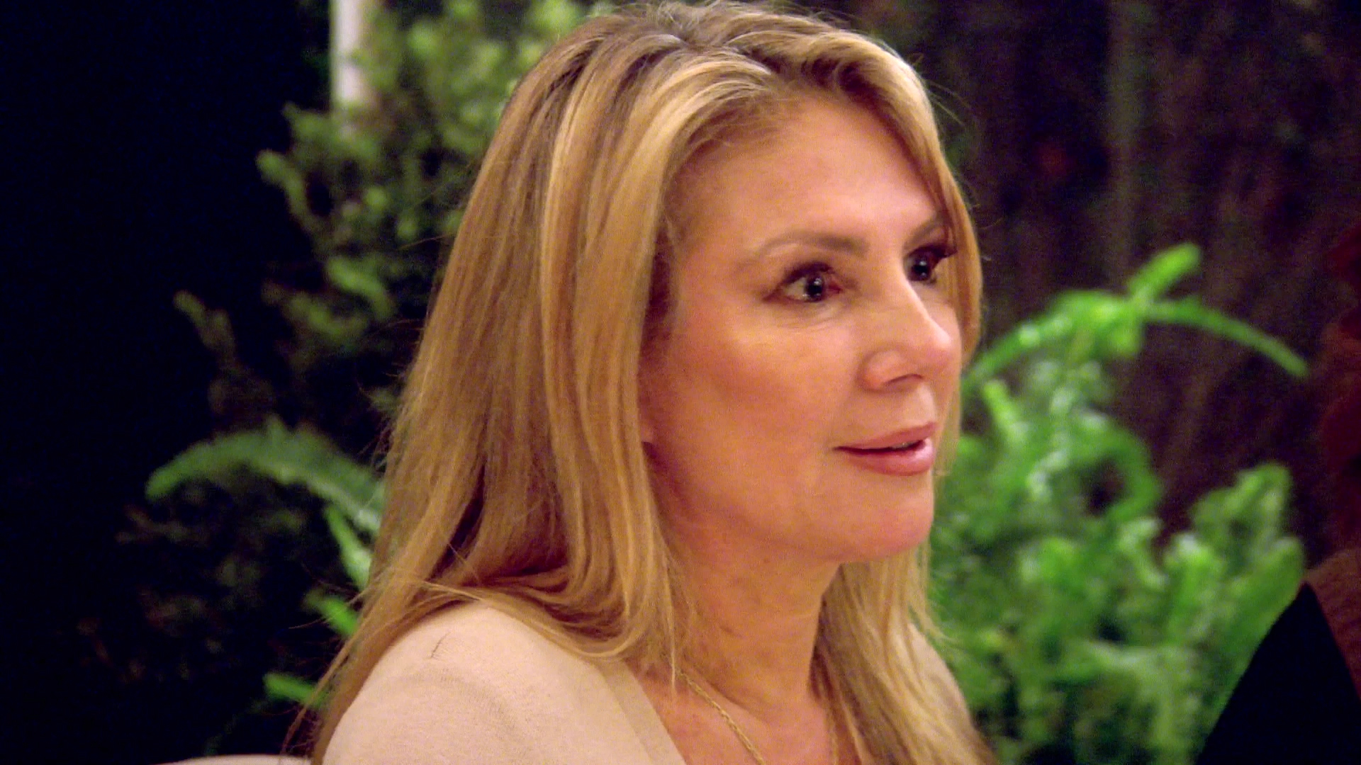 Ramona Doesn't Like Bethenny's Attitude