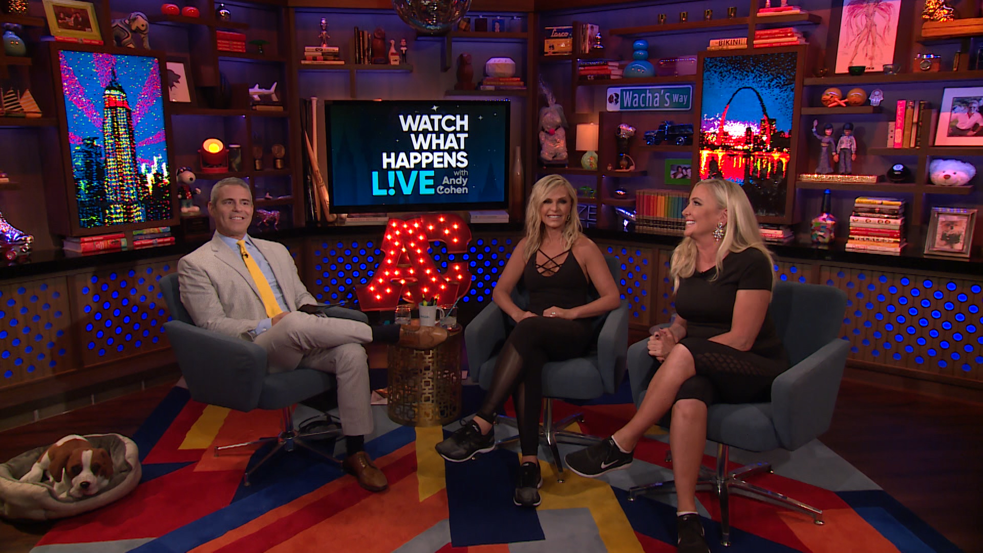 After Show: Shannon & Tamra's Thoughts on the New 'Wives