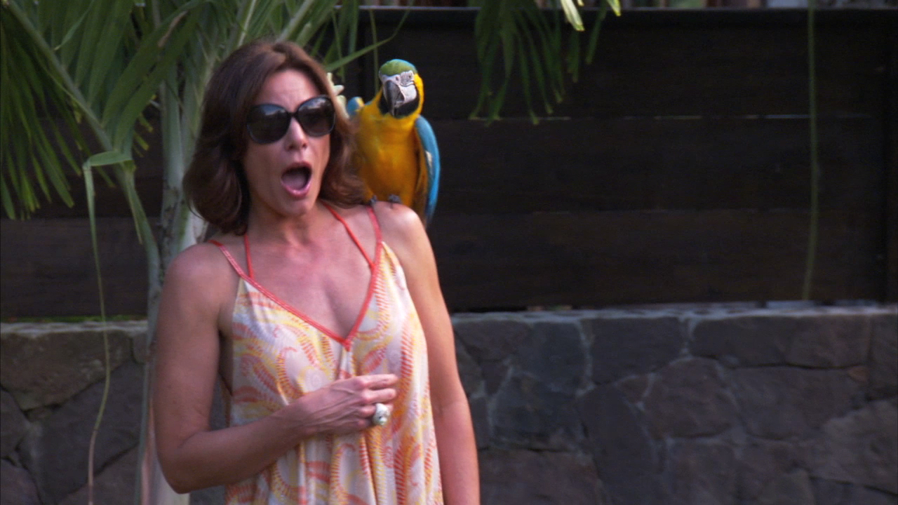 LuAnn's Gone to the Birds