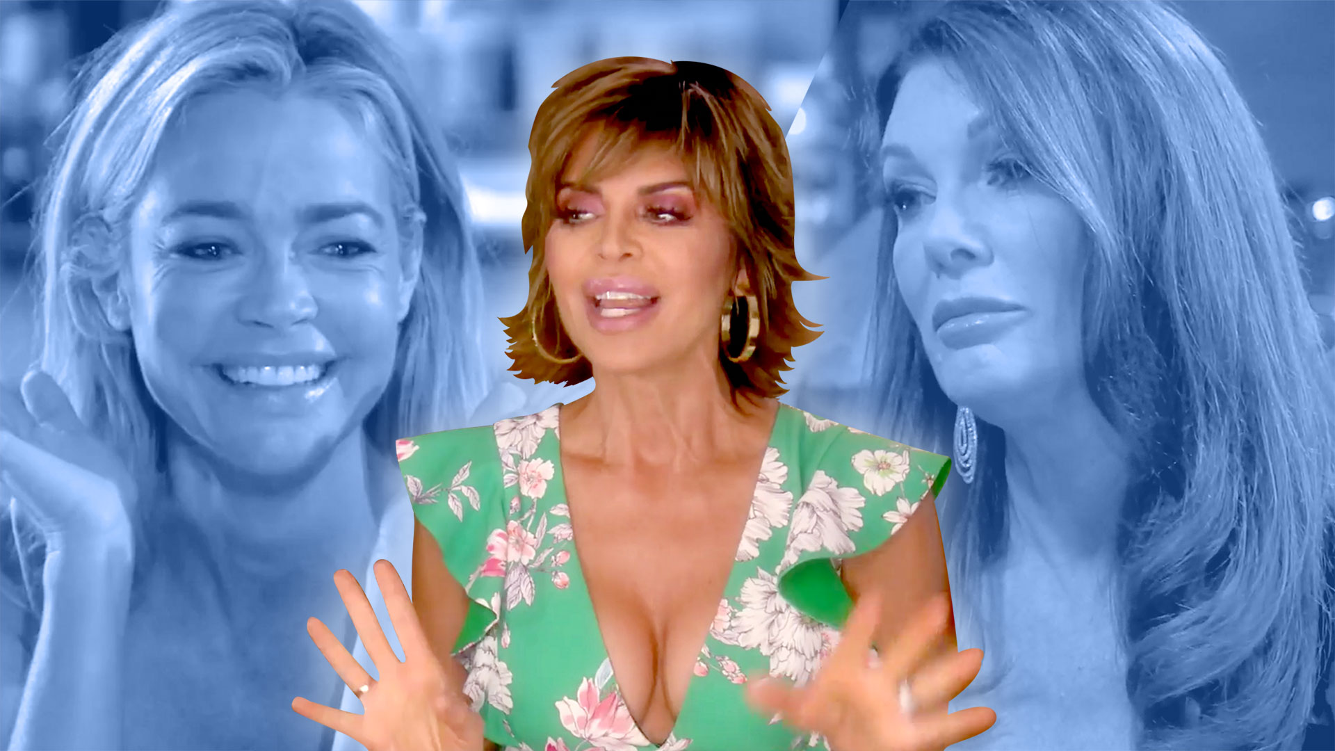 "Lisa Rinna Does ""Not Have a Dog in this Fight"" When It Comes to the RHOBH Pet Drama"