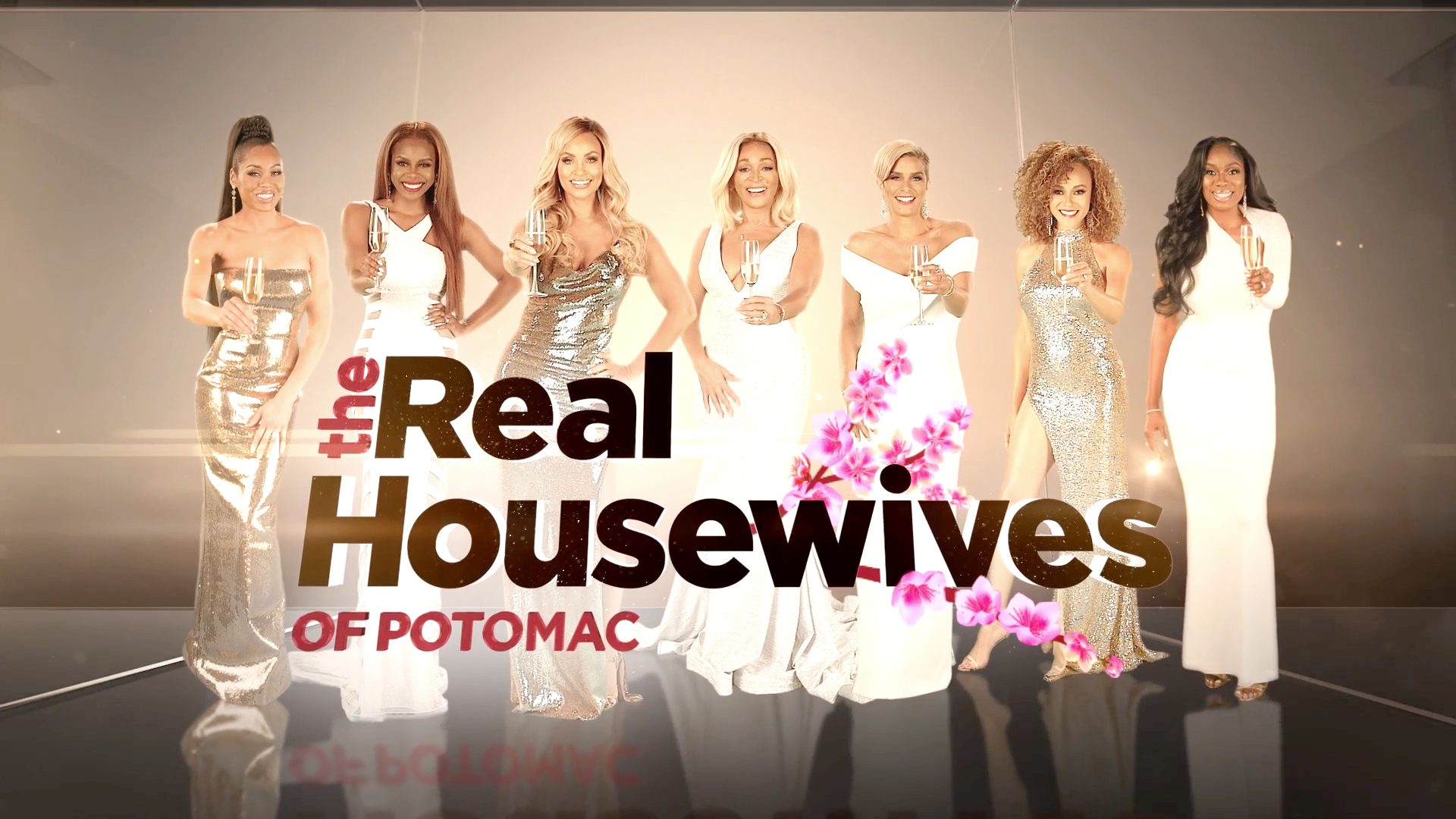 The Real Housewives of Potomac Season 5 Taglines Are Revealed!