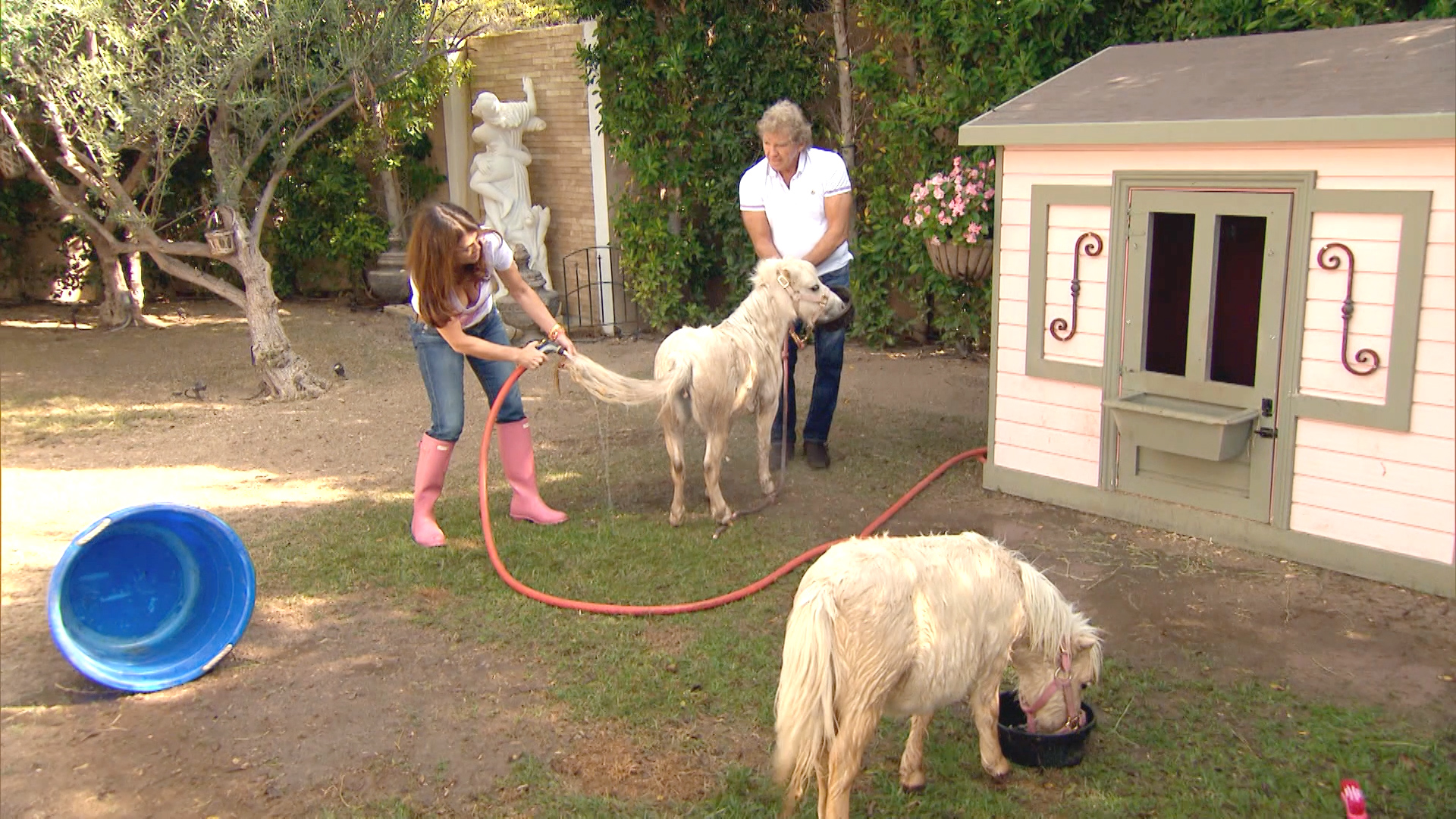 How Many Animals Does Lisa Vanderpump Really Have?
