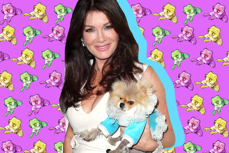 Lisa Vanderpump with Dog Giggy
