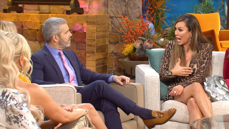 Why Is Kelly Dodd So Angry With Shannon Beador?