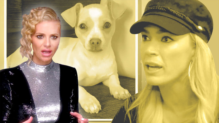 Dorit Kemsley Sheds New Light on the Dog Drama with Lisa Vanderpump