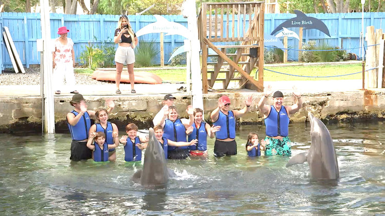 The Biermanns Play with Dolphins
