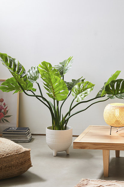 UO Philodendron Faux Plant