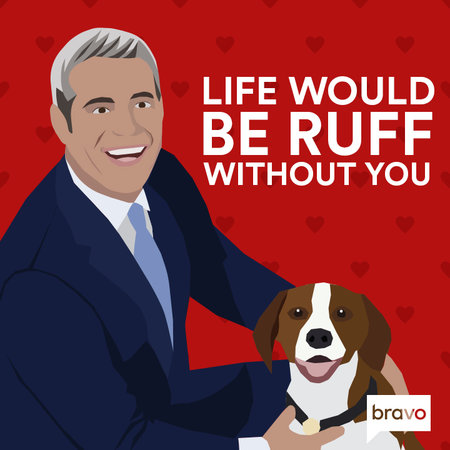 Andy Cohen Valentine