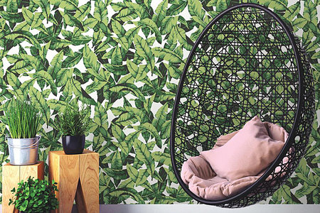 Removable Wallpaper Trend 2019 Best To Buy Right Now Home