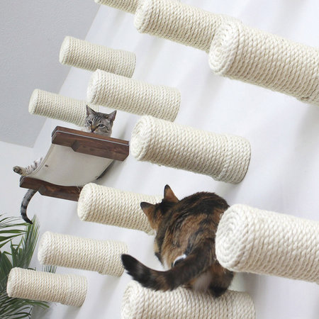 Best Cat Scratching Posts and Scratchers That Work
