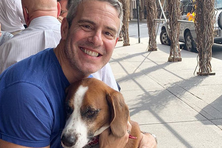Andy Cohen Wacha Connecticut