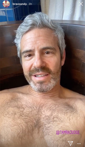 Andy Cohen Brown Tub 1