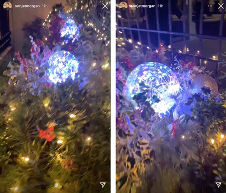 Sonja Morgan Holiday Decor 1
