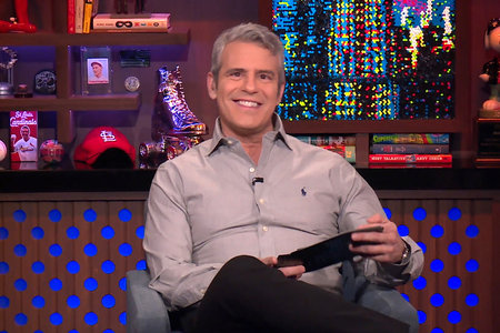 Andy Cohen Rhod Snake Painting