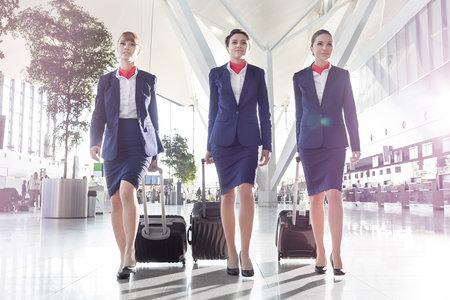 Flight attendant online dating