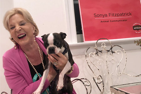 Sonya Fitzpatrick Pet Psychic Reading: What's My Dog Feeling | Unleashed