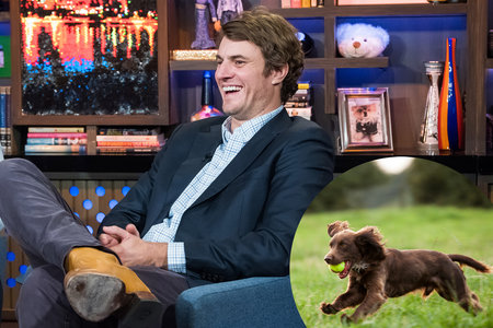 How Did Shep Rose's Family Create This (Now) AKC-Recognized Dog Breed?
