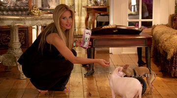 Dina Manzo's House for F---ed Up Pets