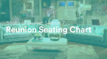 Get Your First Look at the Shahs of Sunset Season 7 Reunion