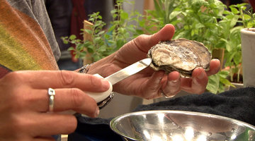Behind the Kitchen Door: Oysters