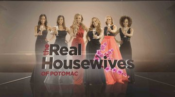 Get The #RHOP Season 1 Taglines
