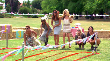 A 'Real Housewives' Dog Race