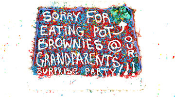 Sorry for Getting Stoned at Grandma's Party