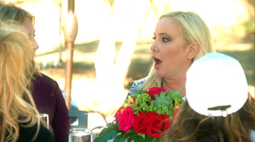 Don't Even F---ing Blame It On Me, Shannon Beador