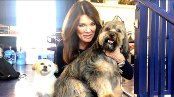 Lisa Vanderpump Announces a HUGE Victory