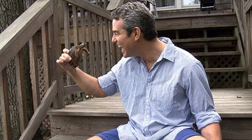 Andy Cohen has his Turtle Time