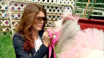 Lisa Vanderpump Falls in Love With a Miniature Horse