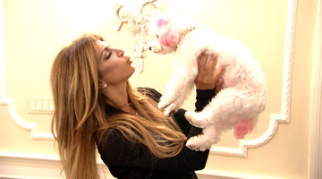 Meet Teresa Giudice's Dog!