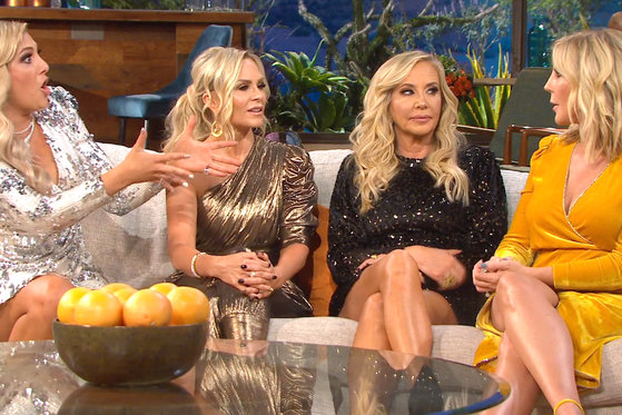"Vicki Gunvalson Thinks Braunwyn Windham-Burke's Lifestyle Choices Are ""Disgusting"""